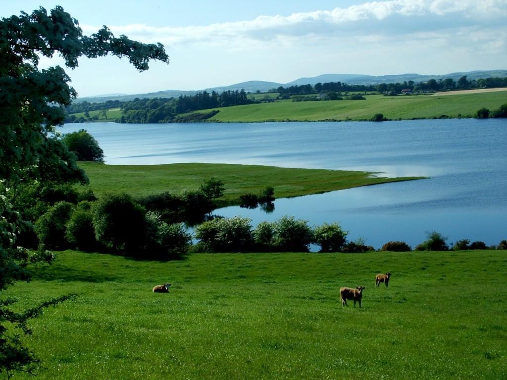 524a. Inniscarra Reservoir near Scornagh