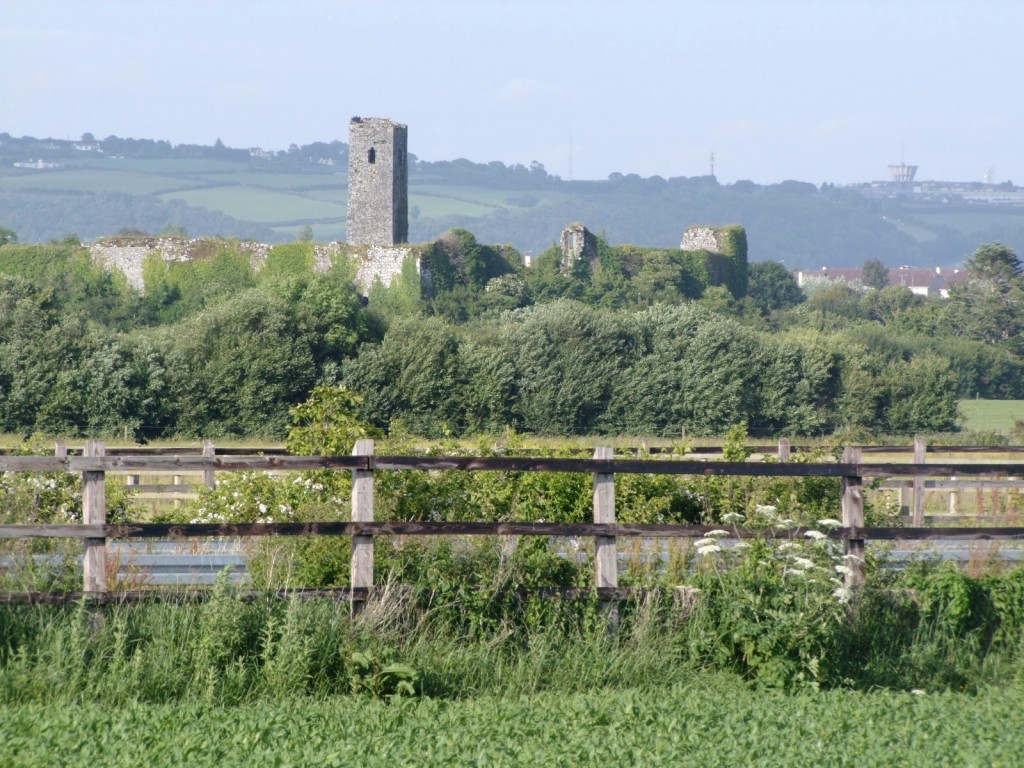 524b. Ballincollig Castle from Greenfields, Ovens
