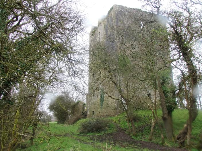 787a. Kilcrea tower house, March 2015