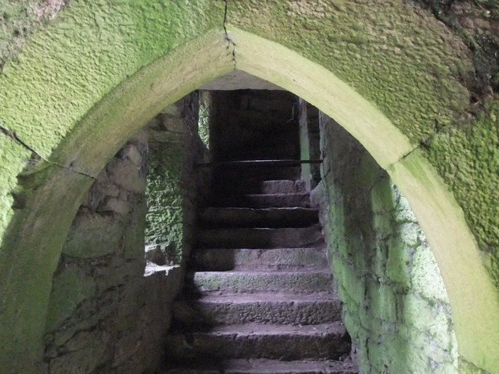 787c. Entrance arch and stairs, Kilcrea tower house, March 2015