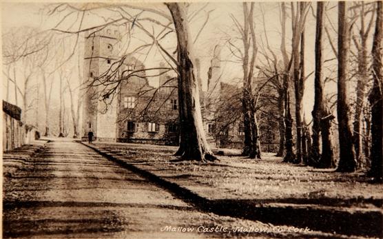 833a. Mallow Castle, c.1900