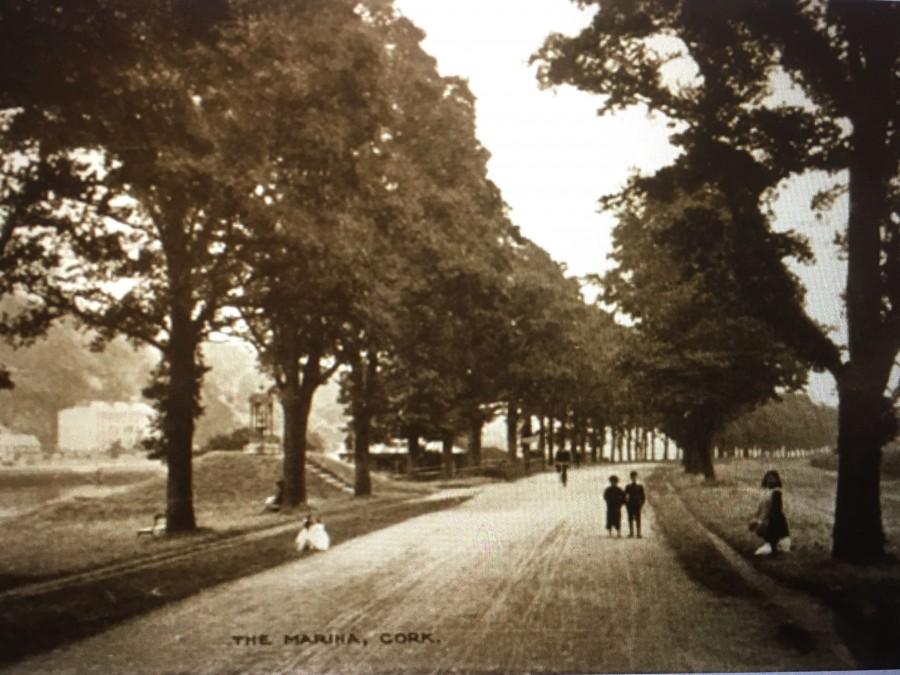 853b. The Marina, Cork, c.1900