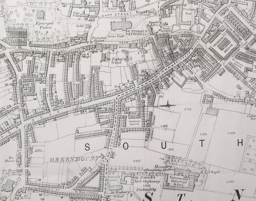 867b. Map of slum laneways off Barrack Street, 1900