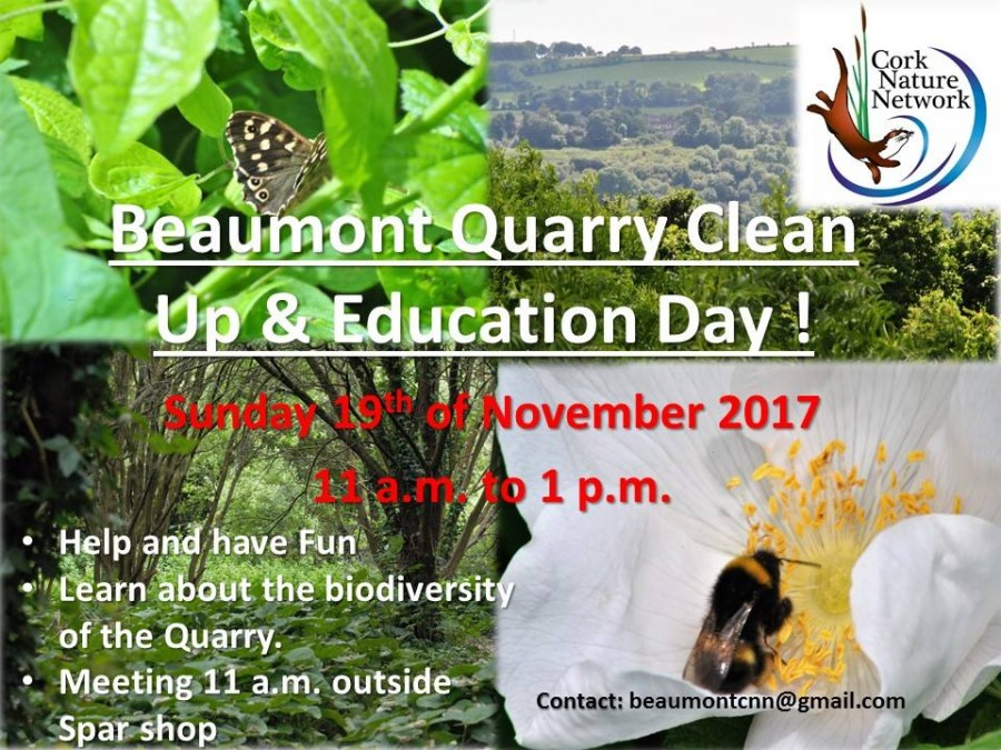 Beaumont quarry clean up and Education Day, 19 November 2017
