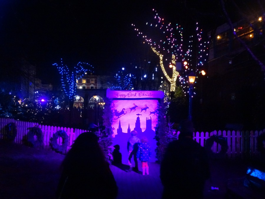 GLOW Festival, Christmas in Bishop Lucey Park, December 2018