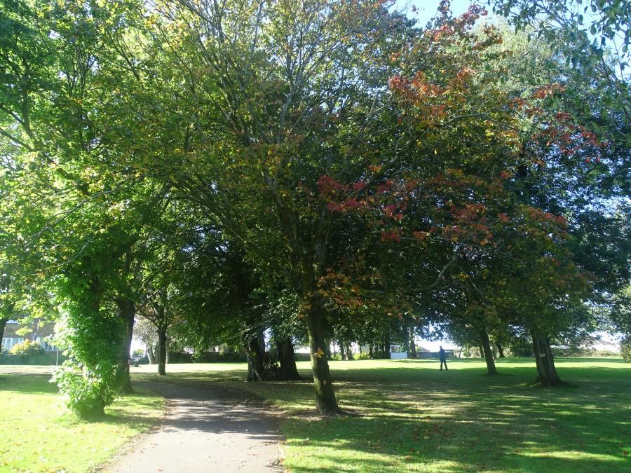 Ballinlough Community Park, Cork, 18 September 20194.