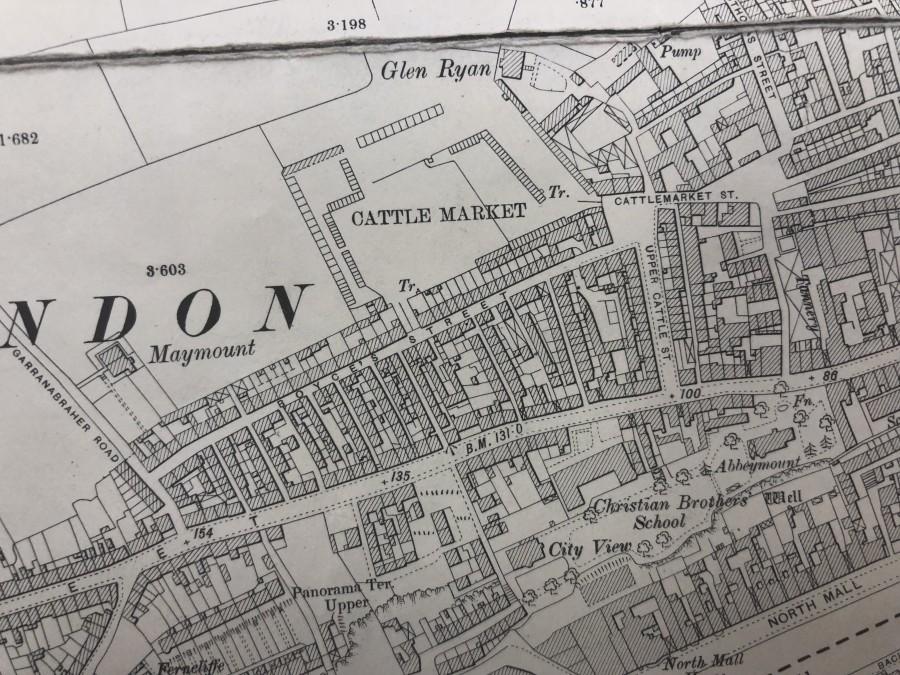 1018b. Map of Cattle Market site off Blarney Street, pre development, c.1900