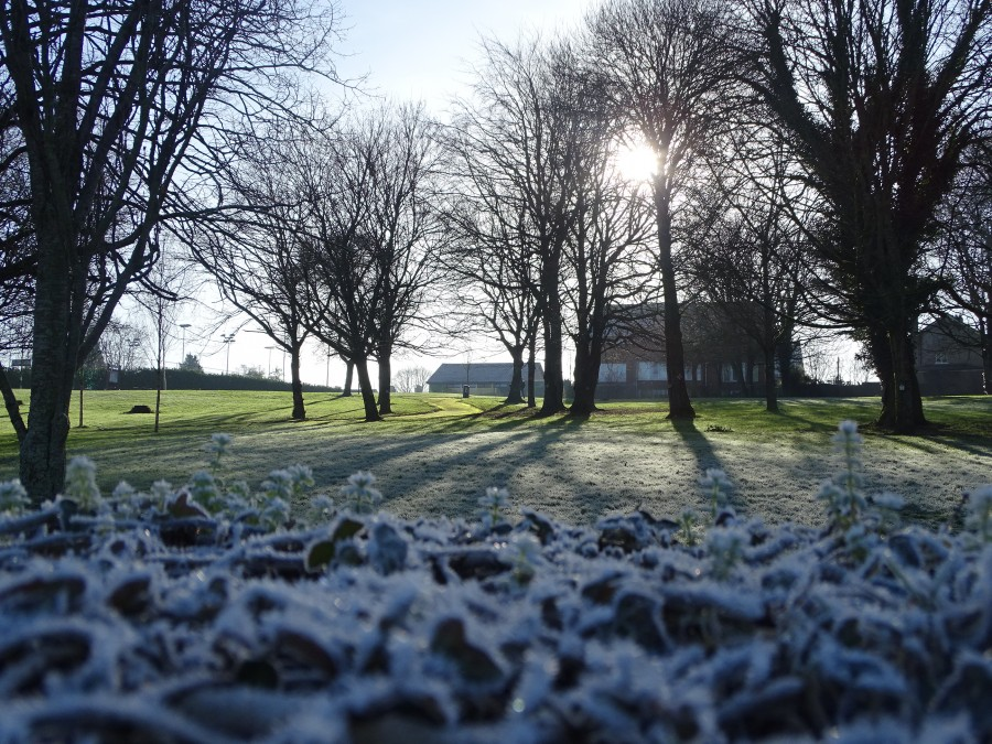 Ballinlough Community Park, Cork. 19 January 2020