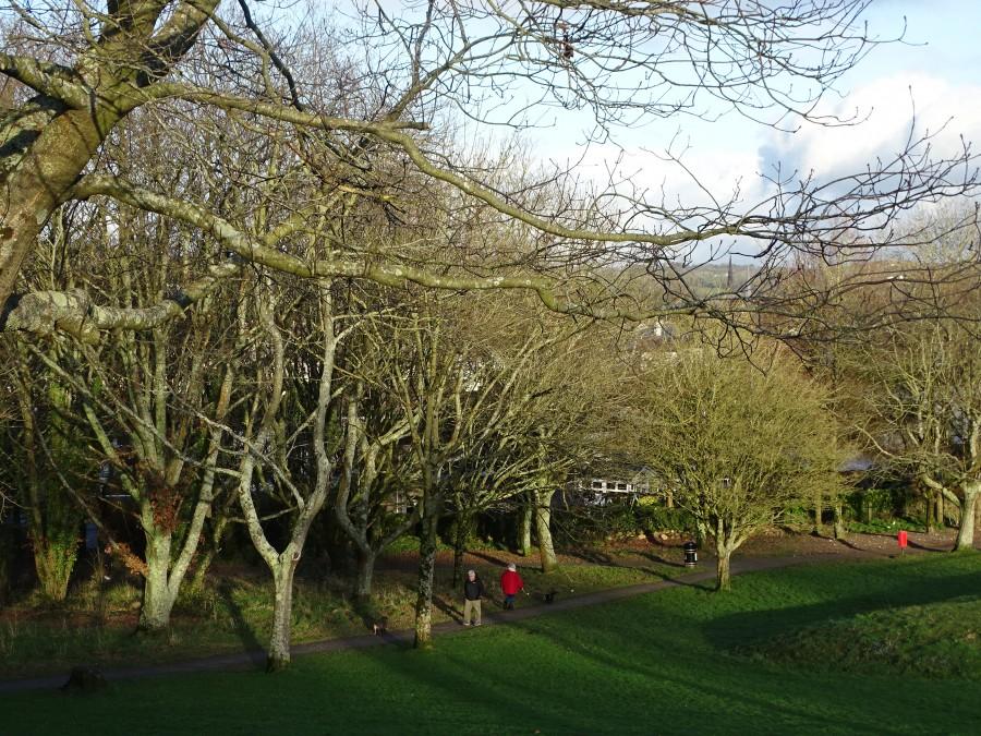 Beaumont Park, Cork by Cllr Kieran McCarthy, 12 January 2020