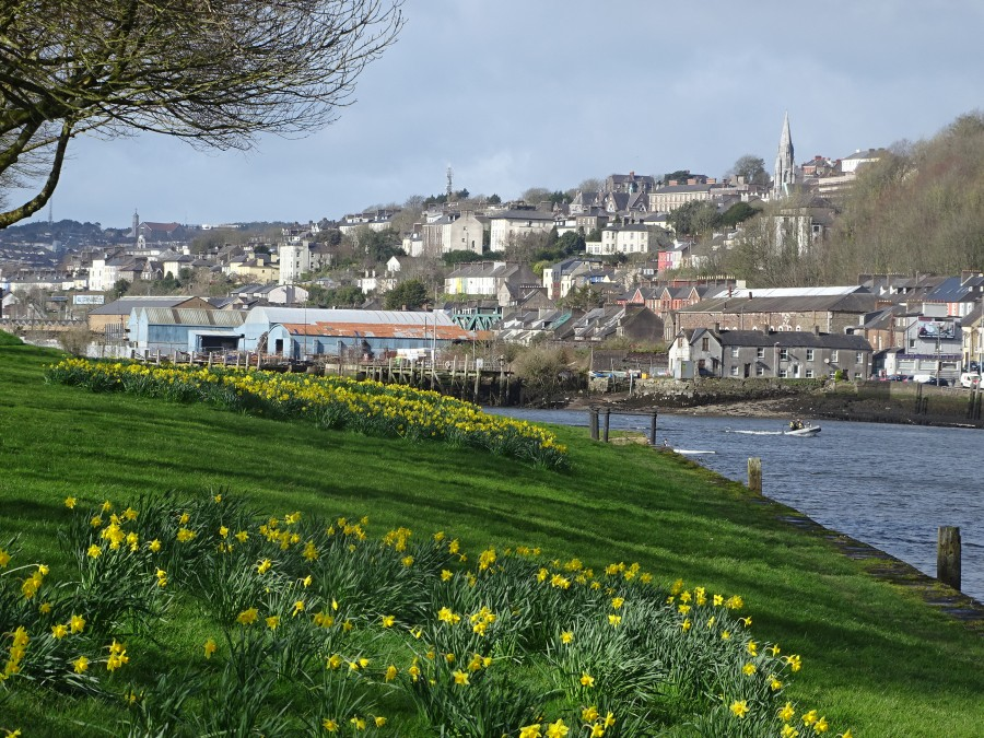 Spring at The Marina, Cork, 8 March 2020