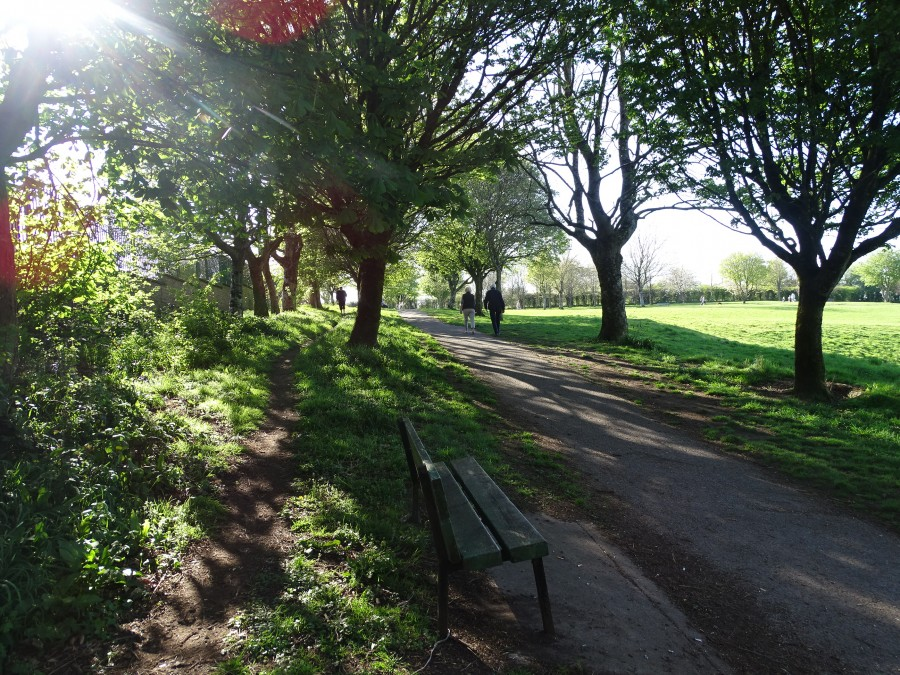 Beaumont Park, Cork, 15 April 2020