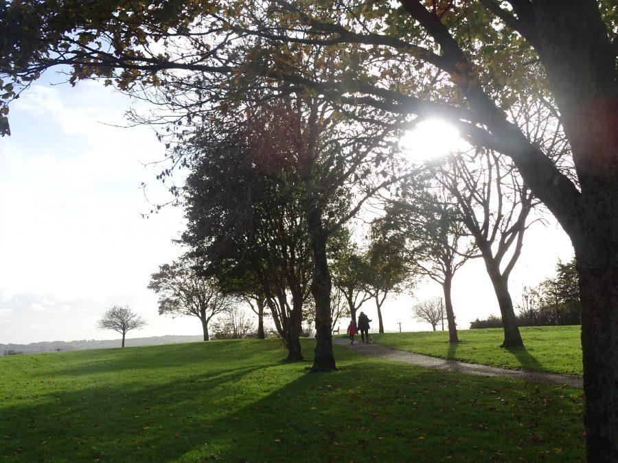 Beaumont Park, Cork, 25 October 2020 (picture: Cllr Kieran McCarthy)