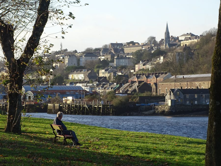 The Marina, Cork, November 2020 (picture: Cllr Kieran McCarthy)