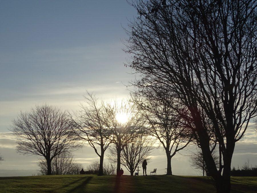 Beaumont Park, Cork, 8 December 2020 (picture: Cllr Kieran McCarthy)