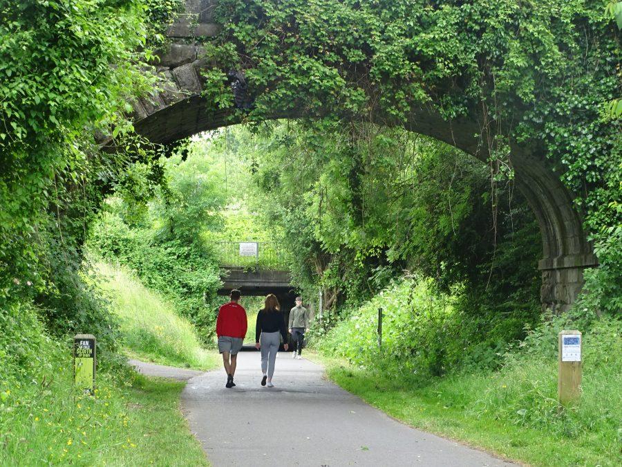 Summer at Old Railway Line Walk, Cork (picture: Kieran McCarthy)
